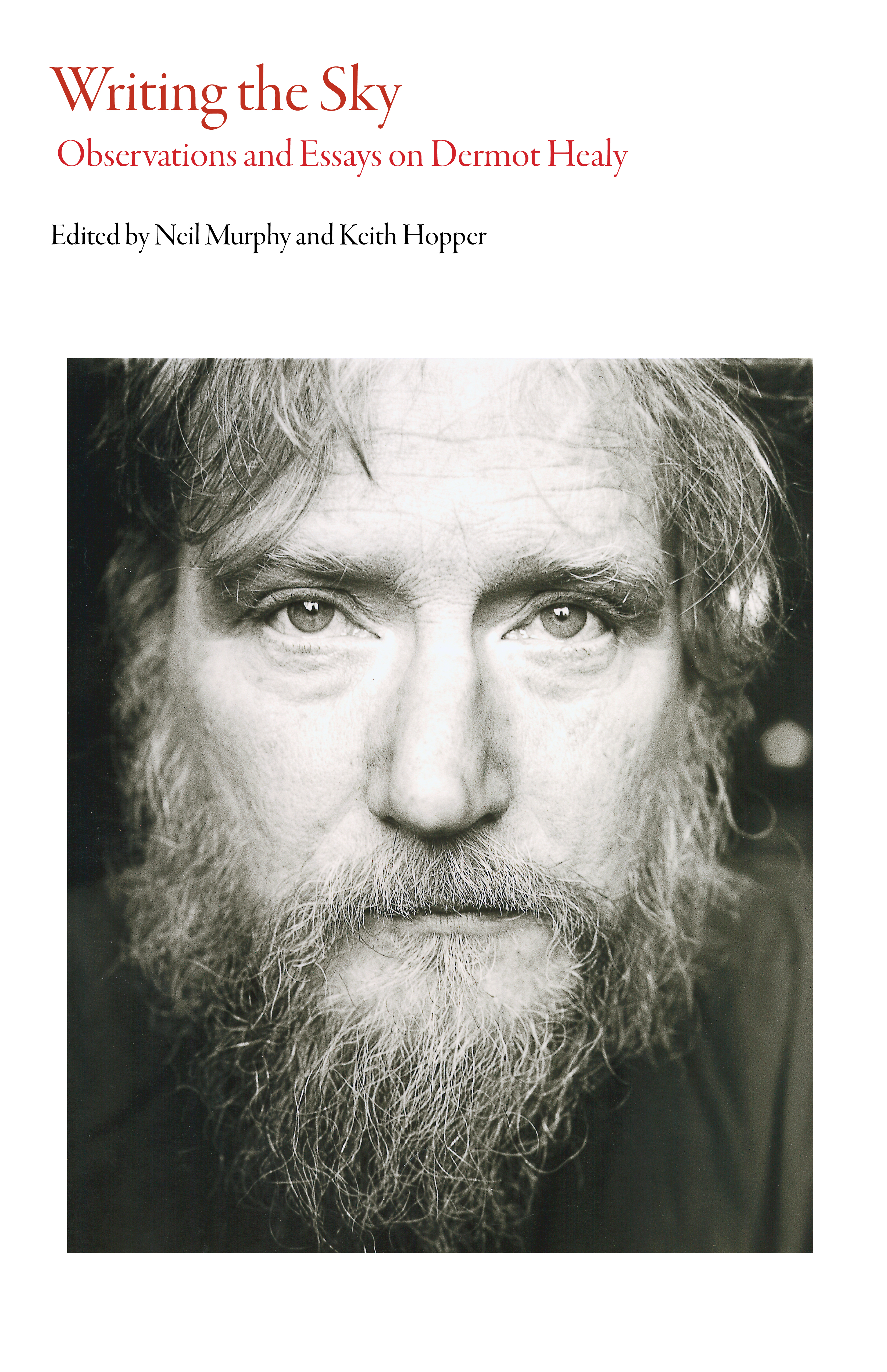 writing the sky observations and essays on dermot healy dalkey  list price 40 00